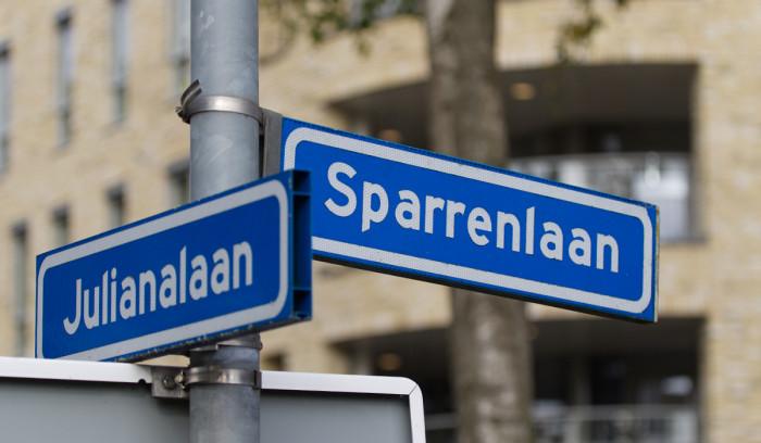 Kroondomein ligt aan de kruising Julianalaan - Sparrenlaan